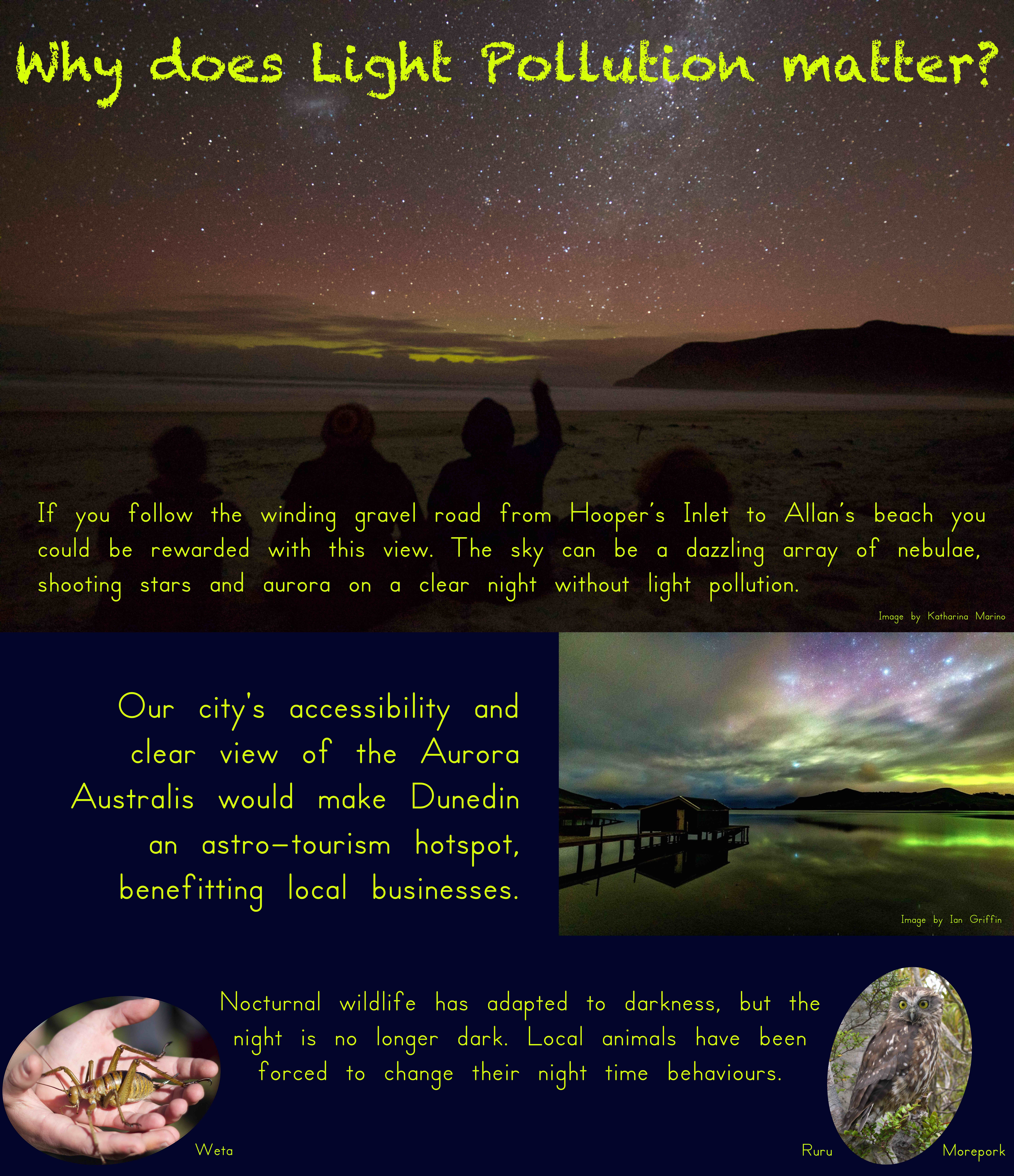 Why does light pollution matter