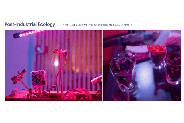 """Screenshot of Erik Contreras, Stephanie Andrews, and Marlys Mandaville's """"Post-Industrial Ecology"""" page on the In Search of Truth virtual exhibition site."""