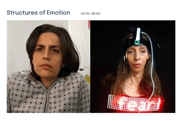 """Screenshot of Avital Meshi's """"Structures of Emotion"""" page on the In Search of Truth virtual exhibition site."""